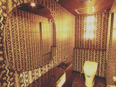 フェリシアクラブのトイレ